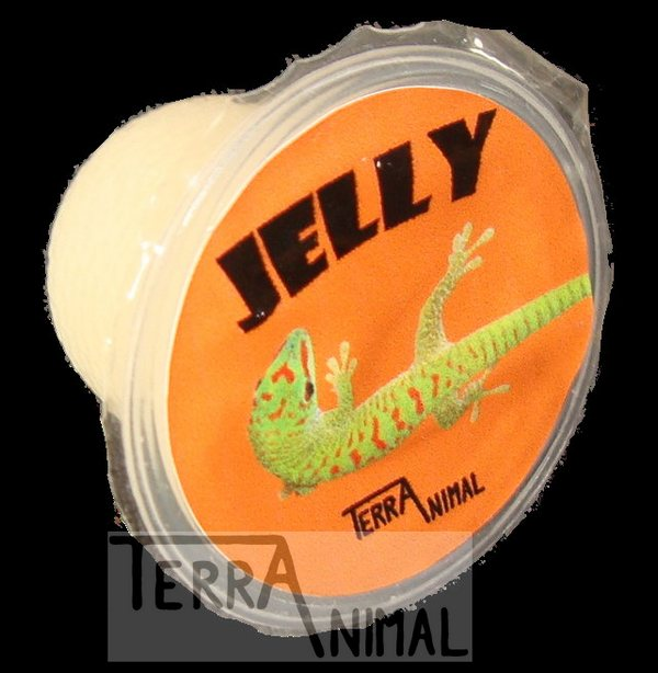 JELLY - TERRA ANIMAL